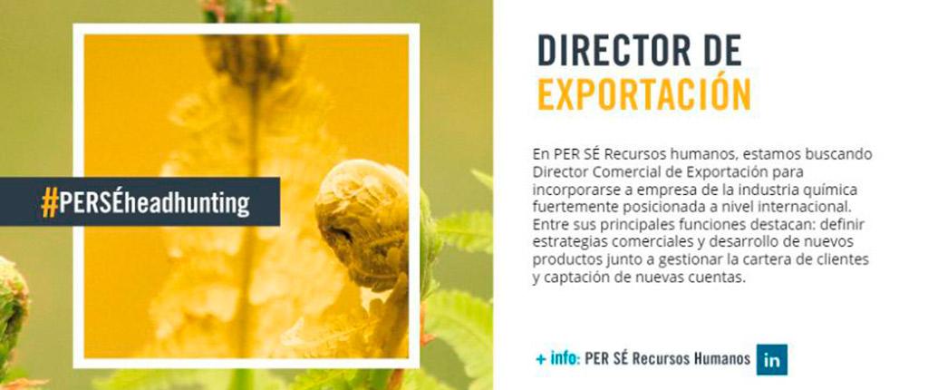 Director Comercial de Exportación